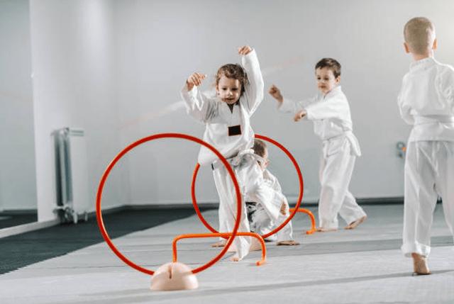 Kidsbirthday, Vitali Family Karate