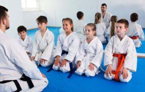 82895411 M Scaled 1 300x190, Vitali Family Karate